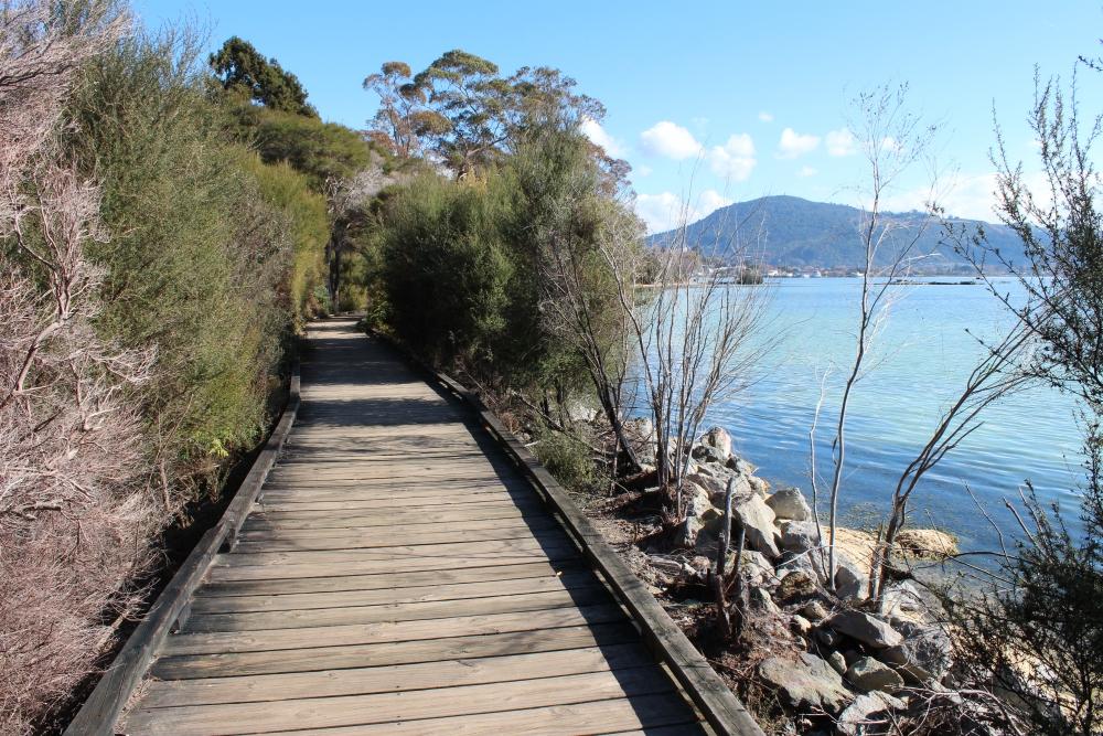 Rotorua City Walk