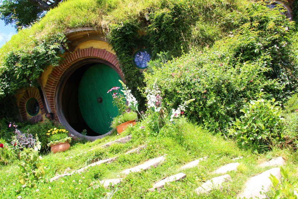 Rotorua To Hobbiton