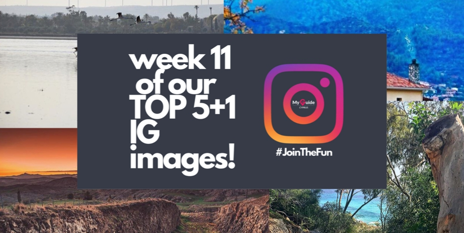 TGIF with the TOP 5+1 images of the week! | Week 11