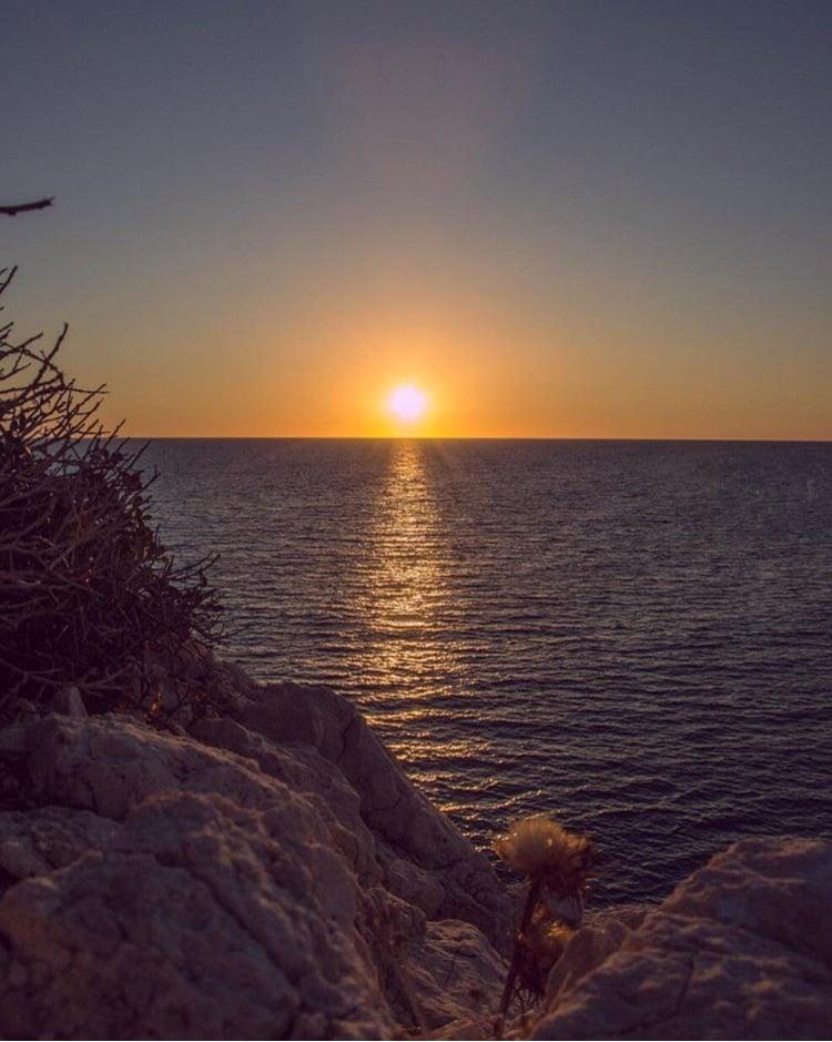 Thank you Marie Vignette   SunDay SunSet #7