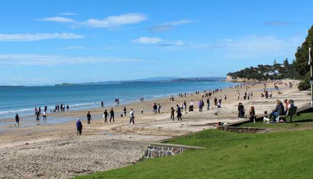 Top 10 Auckland Beaches