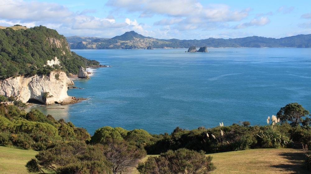 Top 5 Day Tours From Auckland