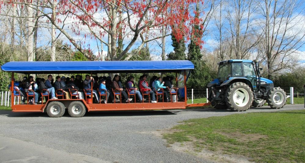 Top 5 Rotorua Family Activities