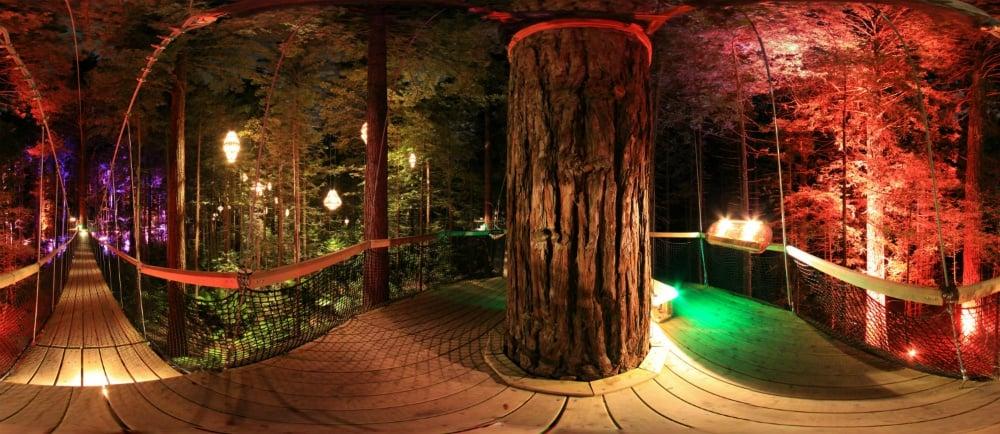 Top 5 Things To Do In Rotorua At Night