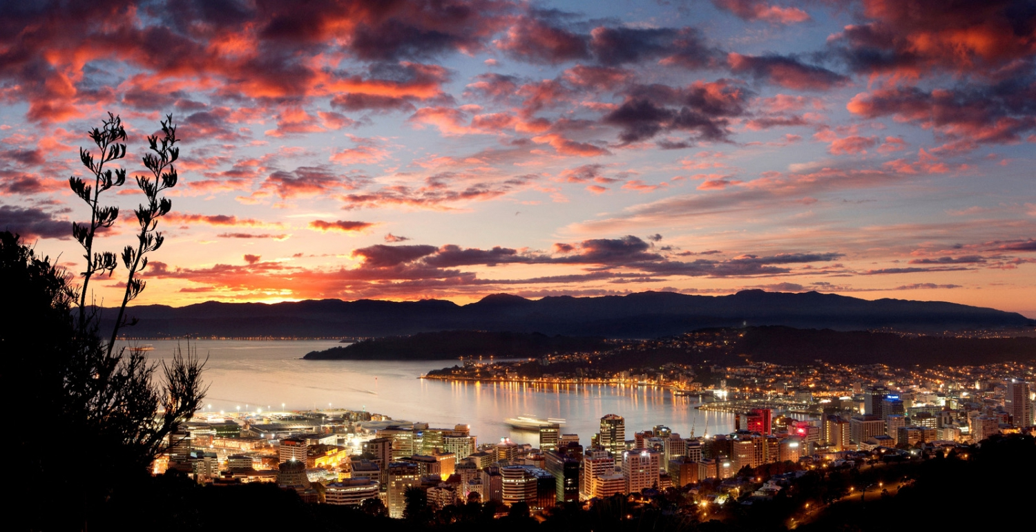 Top 5 Wellington Views