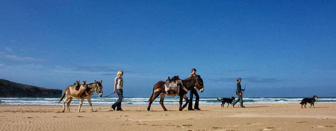 Wild Wild West Algarve - 4 activities to awaken your wild side