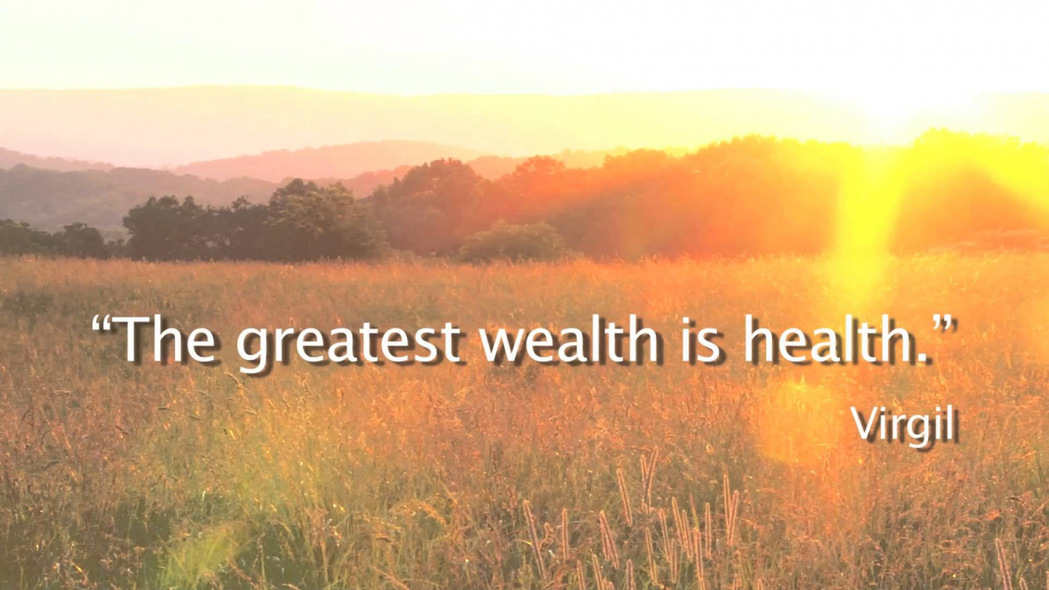 Your Key to Understanding why Health is Wealth