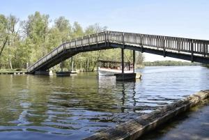 Boat Trip on Lyngby Lake and Millstream