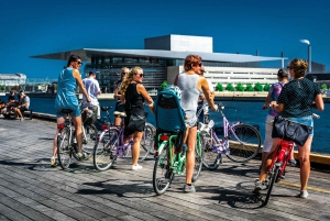 Complete City by Bike Tour