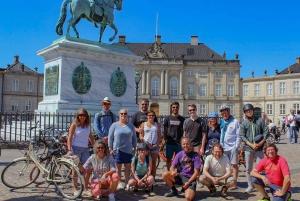 Copenhagen: 1.5-Hour Bike Tour
