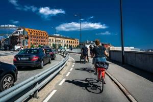Copenhagen: Complete City by Bike Tour