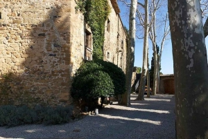 Barcelona: Dali Museum and Gala Castle Tour with Lunch