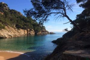 From Barcelona: Costa Brava Coastal Path Hike & Tossa de Mar