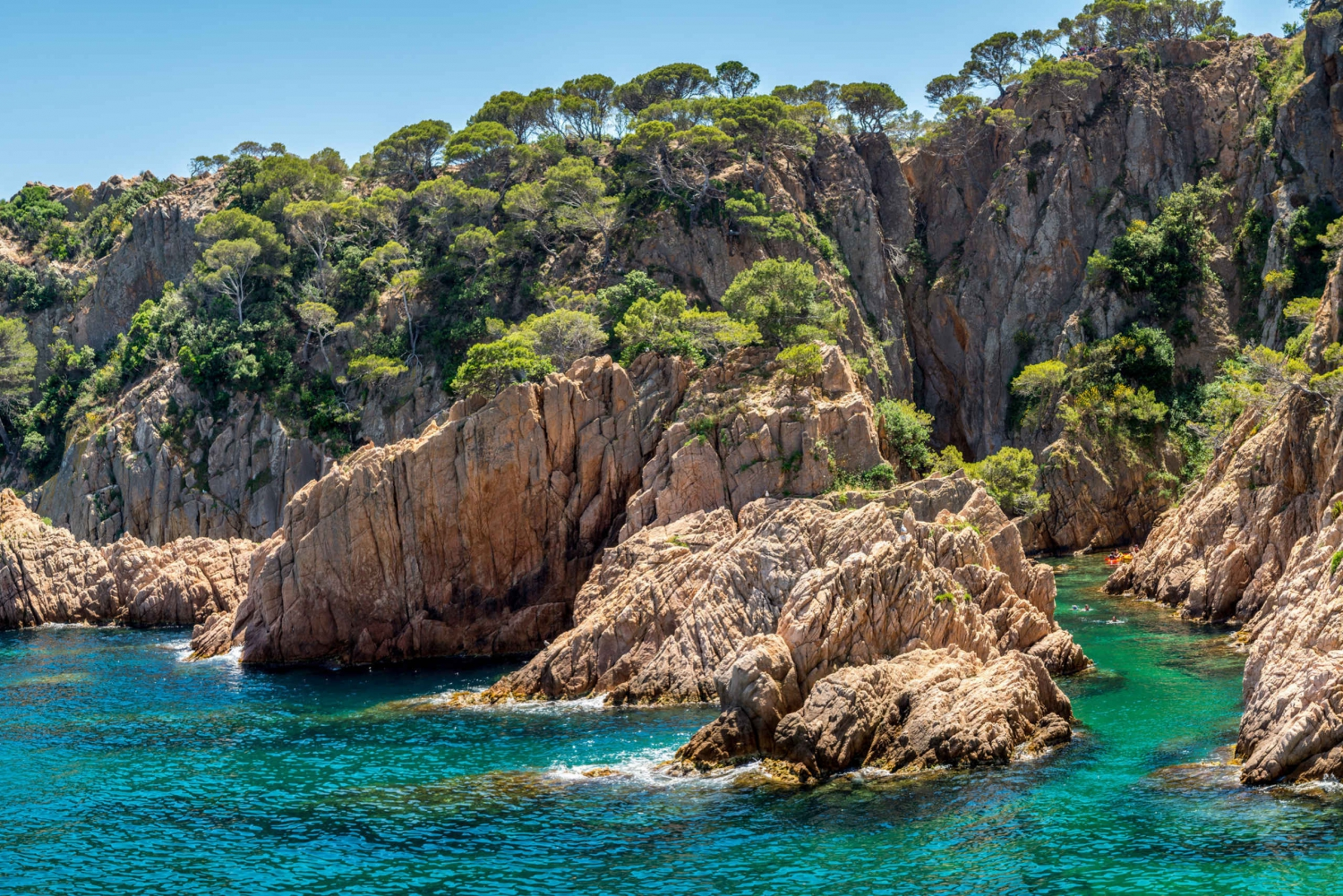 From Barcelona: Costa Brava Coastal Walk and Snorkeling