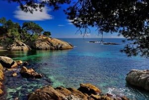 From Barcelona: Empúries & Medes Islands by Boat with Pickup