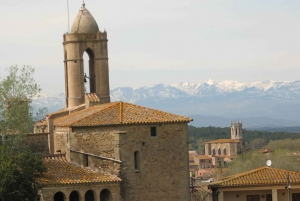 From Barcelona: Private Figueres & Pubol Full-Day Tour