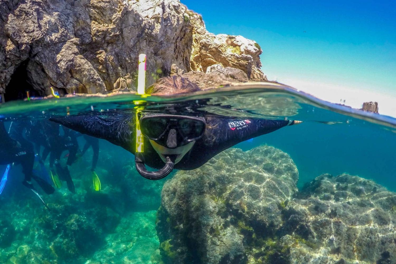From L'Estartit: 3-Hour Snorkeling Trip to the Medes Islands