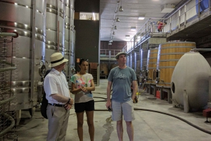 Girona: Local Wineries Tour with Breakfast and Wine Tasting