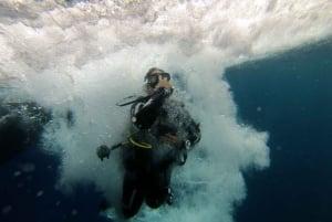 L'Estartit: Try Dive & Snorkeling in Montgrí National Park
