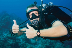 Tossa de Mar: PADI Discovery Scuba Diving