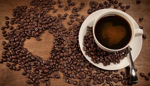 The Best Coffee in Manuel Antonio