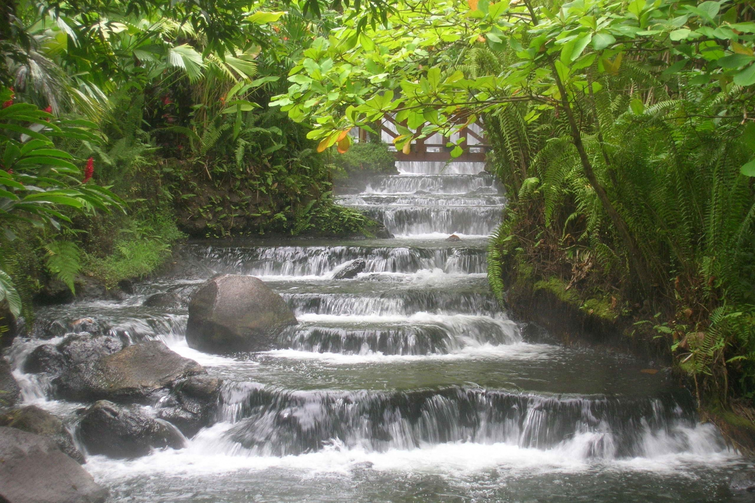 Arenal Volcano Hike and Tabacón Hot Springs from Arenal