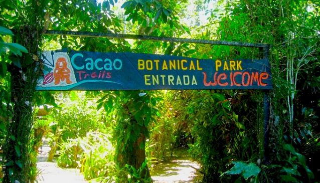 Cacao Trails