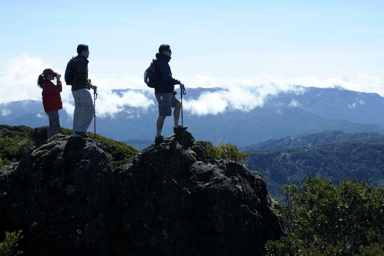 Cerro Buena Vista: Guided Hiking and Wildlife Tour