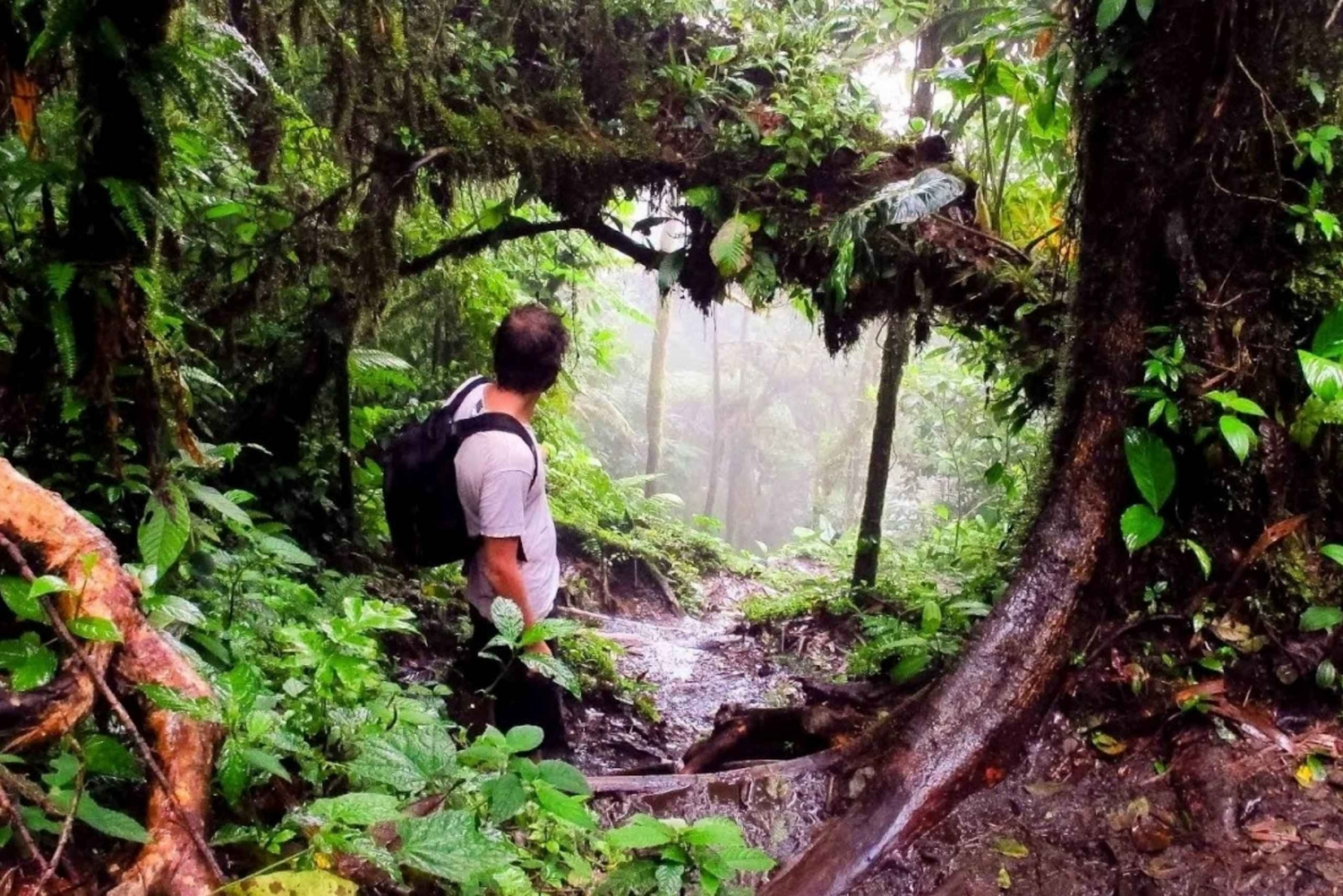 Chato and Arenal Volcanoes: Extreme Hiking Tour