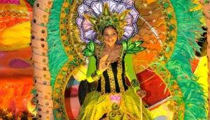 Festival of Lights - Festival de Luz