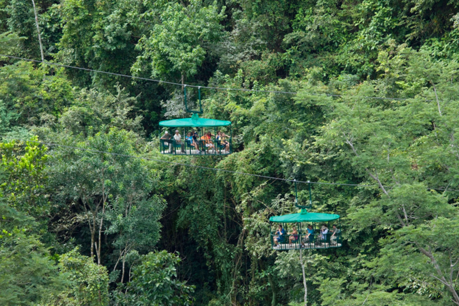 From Jaco: Pacific Aerial Tram Rainforest Tour