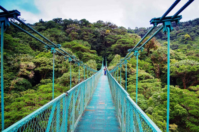 From San José: Monteverde Hanging Bridges Day Trip