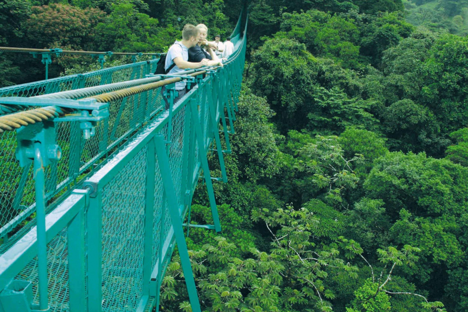 Full-Day Zip-line Tour with Hanging Bridges near San Jose
