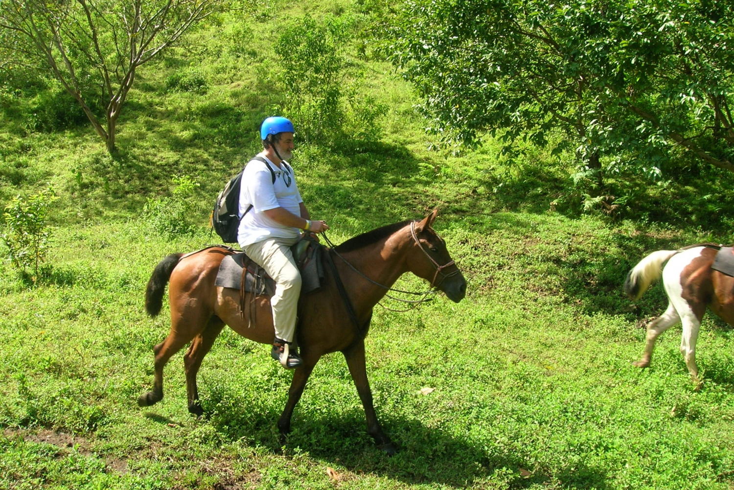 Half Day Rainforest Horseback Ride to the Arenal Volcano