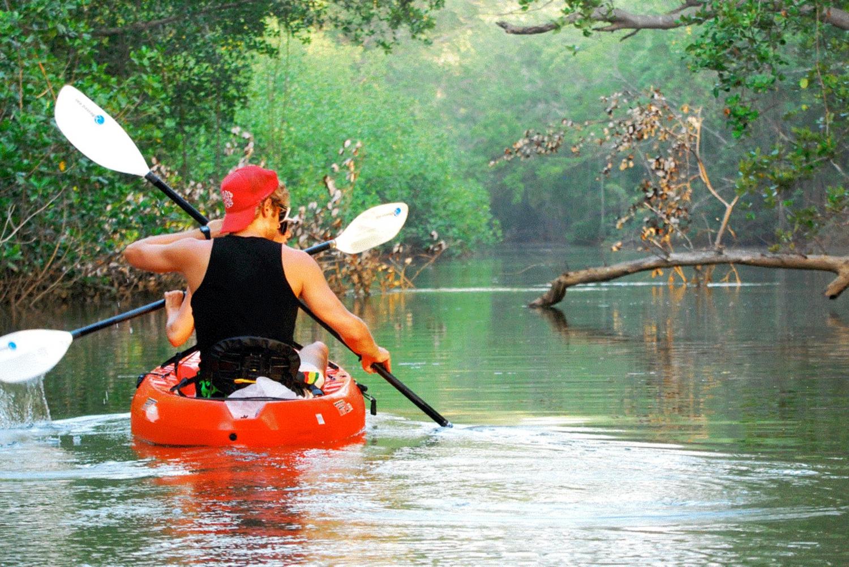 Nosara River Kayaking and Birdwatching Tour