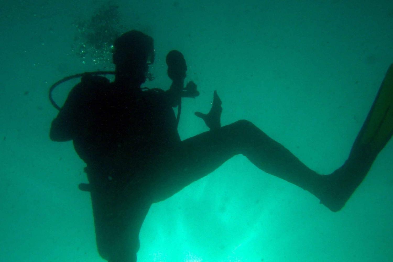 Papagayo Gulf: 2 Dives Half-Day Scuba Dive Tour