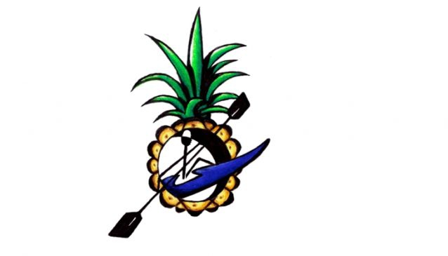 Pineapple Tours - Dominical
