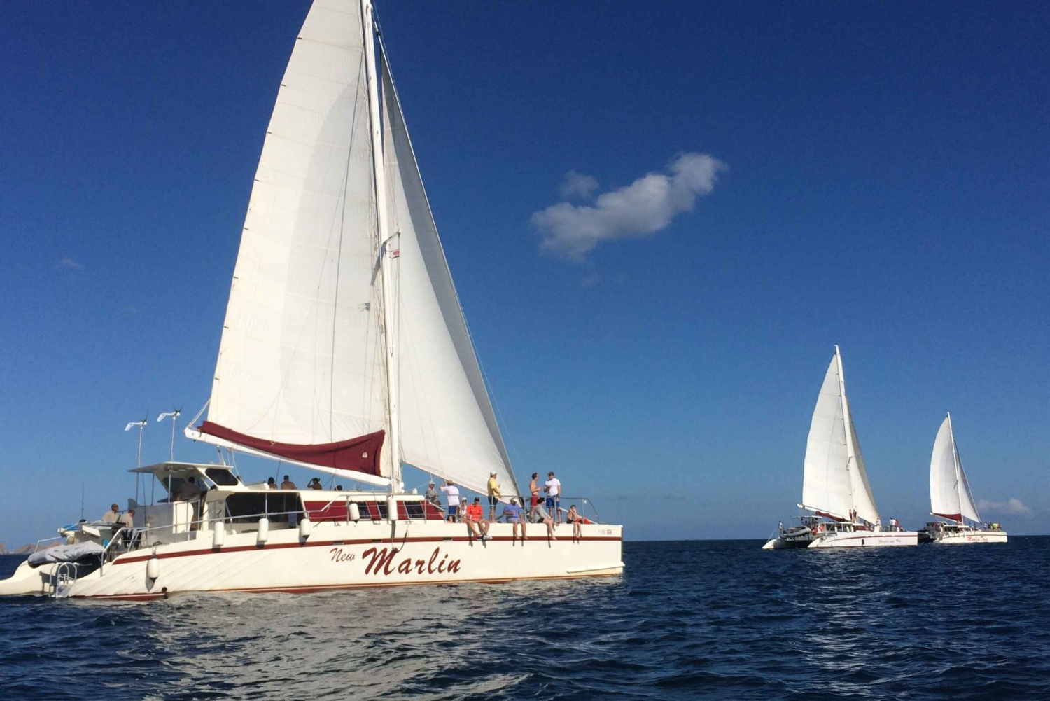 Playas del Coco: Sunset Sailing and Snorkeling Tour