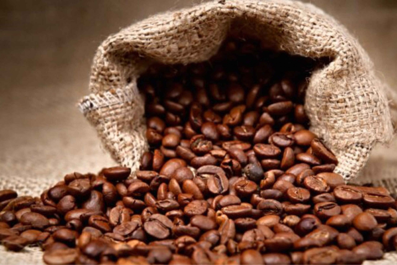 Poas Volcano And Coffee Tour At Starbucks Farm From San José