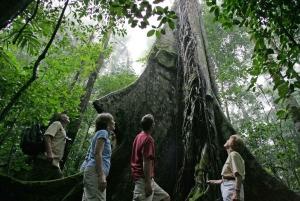 Rainforest Adventure Costa Rica Atlantic Trekking Tour