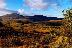 6-Day Tour of Southern Ireland from Dublin