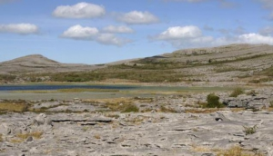 Burren Wild Guided Walking Tours