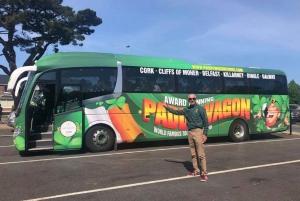 Cliffs of Moher Full-Day Tour from Dublin