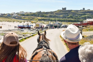From Doolin: Inis Oirr Island and Cliffs of Moher Ferry