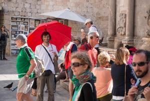 Discover Dubrovnik Walking Tour