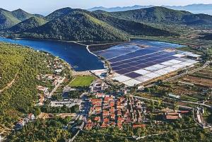 Dubrovnik: Day Tour to Korčula