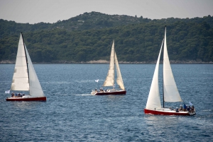 Dubrovnik: Private Sailing Full Day Tour
