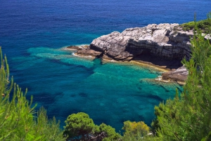 From Dubrovnik: Private Speedboat Cruise to Mljet