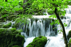 From Omis, Split or Trogir: Plitvice Lakes Small Group Tour