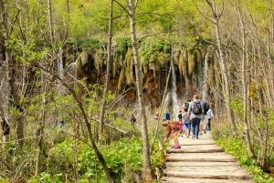 From Split: Plitvice Lakes Full-Day Tour
